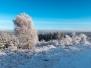 Harz (Jan. 14)
