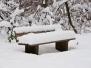 Winter (Jan. 10)